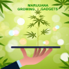 cannabis-grow-gadgets
