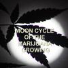 moon-cycle-marijuana-growing